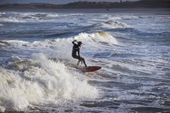 Sunday Surfers   19-01