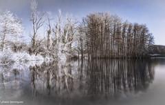 Photos infrarouge 2020