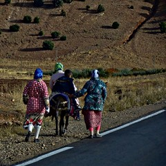 Somewhere in the Maroccan Steppe