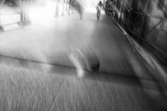 pedestrians, with pigeon