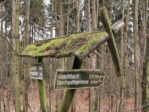 a walk around the world ...war heut auch dabei - aber auch vorbei am Bahnhof Zoo; dann nen Baum von dem viele meinen, dass es ne Pappel sei; den Lungkwitzer 'Soldaten'höhlen und die Hirschbachheide mit dem Wilisch; zum Fin(c)kenfänger von Maxen gings noch