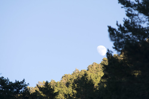 Luna de día