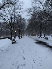 Riverside park. New York