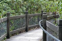 Yuelarbah Walking Trail