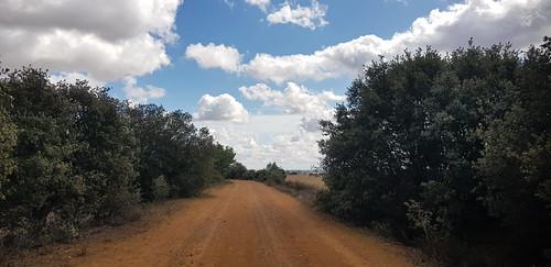20190922 17 488 Frances Wolken Bäume Weg