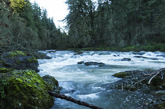 Calapooia River, Oregon