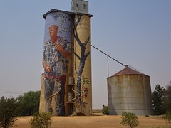 Patchewollock. The starting point of the Victorian Silo Art Trail in the Wimmera.  Grain growing country of the Mallee.
