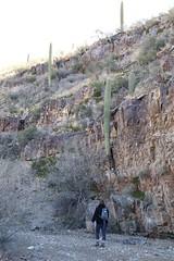 Hiking on wash trail