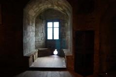Plévenon Château de la Roche Goyon (32)