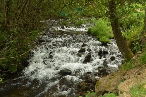 Percurso Rio Uíma VIII