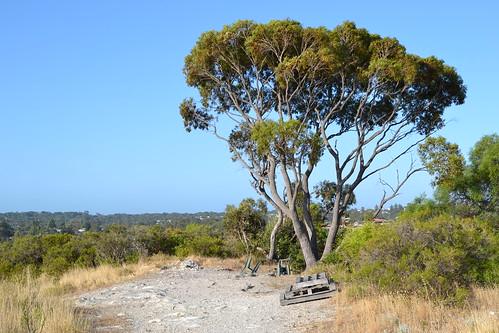 The summit of Clontarf Hill