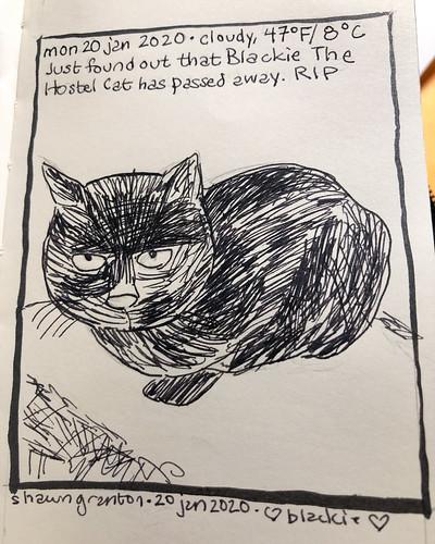 20 January 2020. RIP, Blackie. 😿#blackiethehostelcat