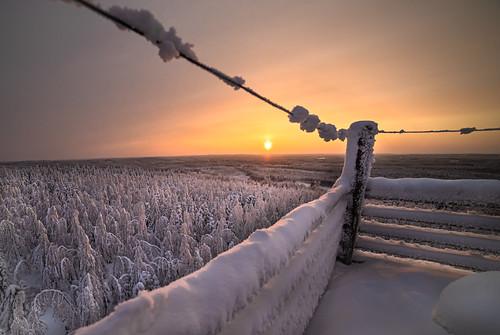 Talvinen Kotaharju, IKs Kuukausi kilpailu