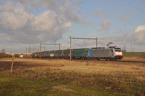 Lineas 186 500 Antwerpen Kallo