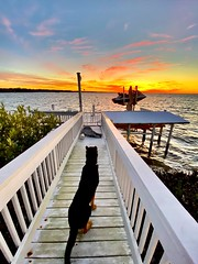 Kennedy Savoring Stunning Sunset Over Chilly Tampa Bay Florida On MLK Day - IMRAN™