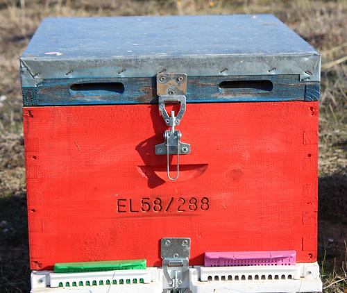 Ο κύριος Μελίσσης ο Κόκκινος ~ Mr Red Honeybee