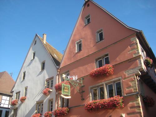 Caveau d'Eguisheim - 3B Place du Château Saint-Léon