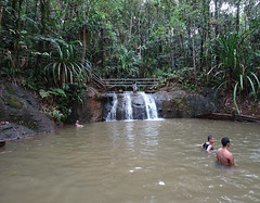 Small Waterfall in Paradise
