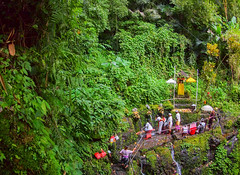 A spiritual cleansing in a small waterfall in Bali