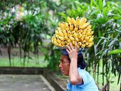 Balinese woman carrying bananas