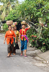Balinese women carrying traditional Hindu offering to the temple