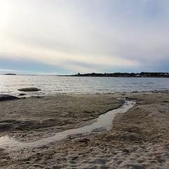 Sandesrranden- 2018