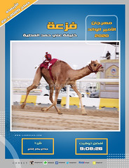 صور سباق الجذاع (الأشواط العامة) مهرجان الأمير الوالد صباح  22-1-2020