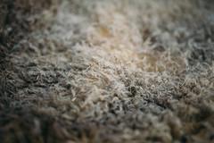 Old, tanned sheepskin closeup
