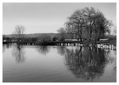 reflets au bord du lac