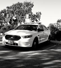 Presidio of Monterey Police Ford Taurus B&W