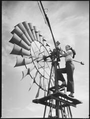 "Linda Malden ""Spring Ridge"" station, 24 January 1944 / photographed by N. Herfort"