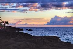 King Kamehameha's Kona