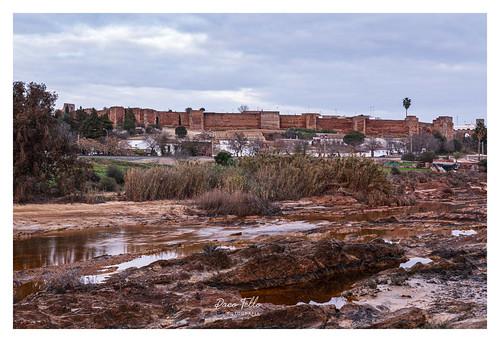 Niebla-Huelva