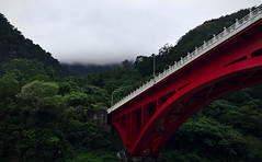 Bridge into the Green