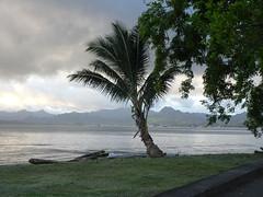 Across Suva Harbour