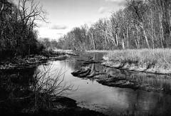 Wild River Border