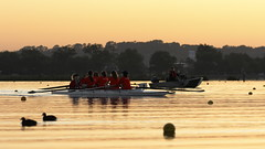Rowers and Coach at Dawn