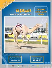 صور سباق الثنايا (الأشواط العامة) مهرجان الأمير الوالد مساء  25-1-2020