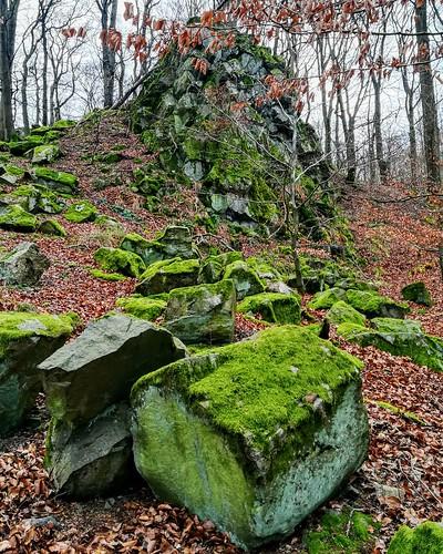 Basaltblockfeld bei Niedersayn, Westerwald