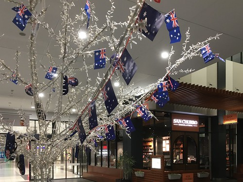 Tree Decorated for Australia Day