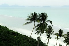 Tropical beach in Koh Samui, Thailand