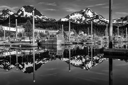 Cordova Harbor - Monochrome