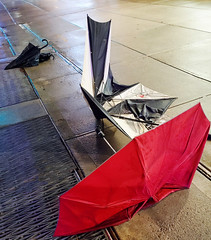 A bad night for umbrellas - Brooklyn, NYC
