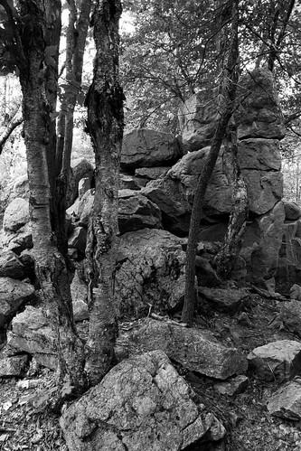 Rib Mountain, WI
