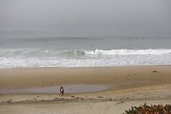 Foggy Day Surfing
