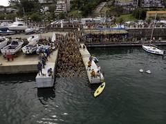 La Travesía de Piriápolis - Puerto de Piriápolis | 200125-0211-jikatu