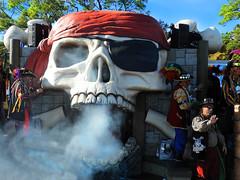 Gasparilla Parade, Tampa 2020