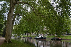 The canals of Utrecht VI