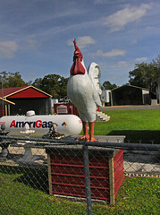 Rooster Sculpture, Land of Lakes Blvd, Land of Lakes, FL
