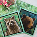 "Quilted Trivets (2)  Set #4  $30  Raccoon and Bear, 9"" square.  Click here for more info"